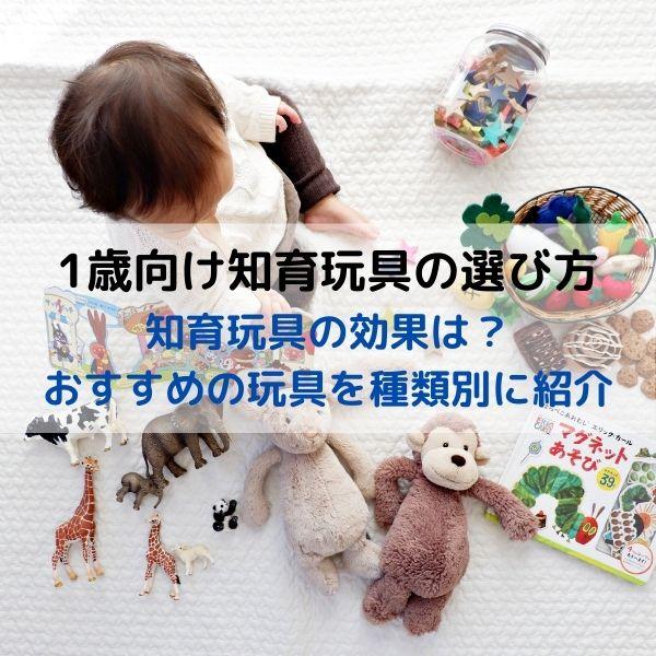 1歳の知育玩具 選び方やおすすめの玩具を種類別に紹介