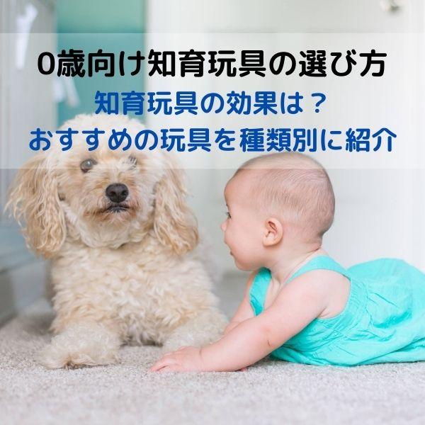 0歳の知育玩具 選び方やおすすめの玩具を種類別に紹介 (1)