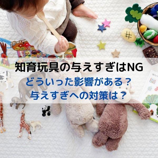 知育玩具の買いすぎ影響